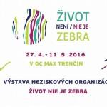 Projekt Zebra